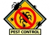 Fezzy's Pest Control and Maintence
