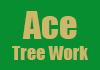 Ace Tree Work