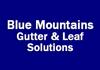 Blue Mountains Gutter & Leaf Solutions