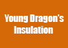 Young Dragon's Insulation