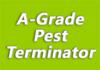 A-Grade Pest Terminator