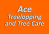 Ace Treelopping and Tree Care