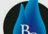 BAS GAS SERVICES