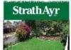 StrathAyr Instant Lawn