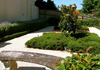 Georgia Harper Landscape Designer