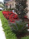 Taylor Made Gardens