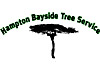 Hampton Bayside Tree & Stump Removal