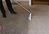 AAA Atomic Pest Control & Carpet Care