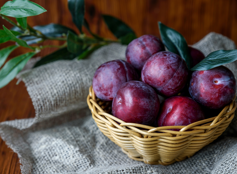 Plum Nutrition Facts and Benefits