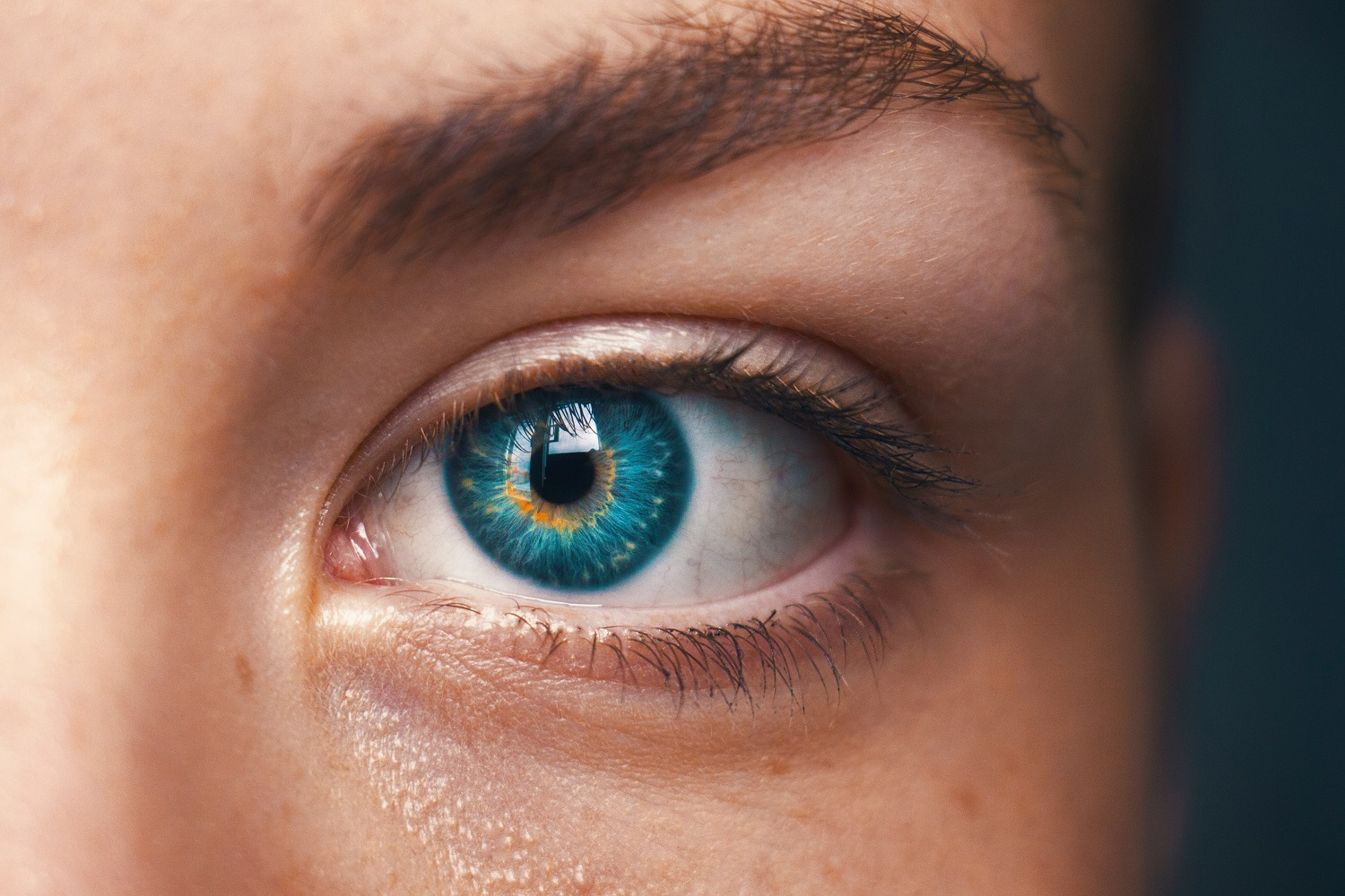 What is Iridology & How Does Iridology Work?